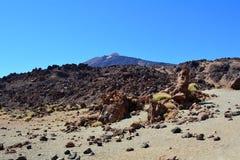 Parque nacional de Teide Tenerife, Ilhas Canárias, Spain Foto de Stock Royalty Free
