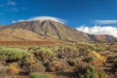 Parque nacional de Teide, Tenerife, Ilhas Canárias, Spain Imagem de Stock Royalty Free