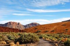 Parque nacional de Teide, Tenerife, Ilhas Canárias Imagem de Stock