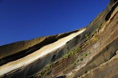 Parque nacional de Teine, Tenerife, islas Canarias Fotos de archivo libres de regalías