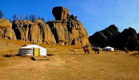 Parque nacional de Terelj, Mongolia Imagens de Stock