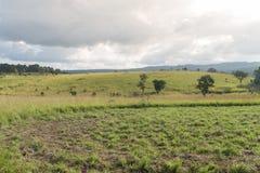 Parque nacional de Thung Salaeng Luang, Tailandia Fotografía de archivo libre de regalías