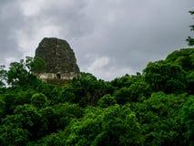 Parque nacional de Tikal fotos de stock