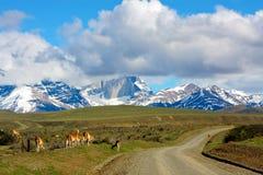 Parque nacional de Torres del Paine Imagenes de archivo