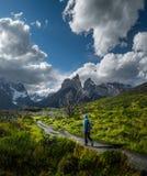 Parque nacional de Torres del Paine imagem de stock