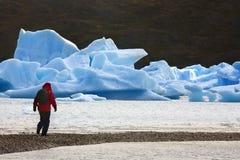 Parque nacional de Torres del Paine - o Chile Imagem de Stock
