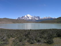 Parque nacional de Torres del Paine, o Chile Foto de Stock Royalty Free