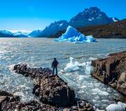 Parque nacional de Torres del Paine fotos de stock