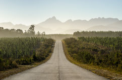 Parque nacional de Tsitsikamma, ruta del jardín, el Océano Índico, Suráfrica Imagen de archivo libre de regalías
