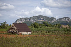 Parque nacional de Vinales Foto de archivo