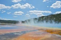Parque nacional de Waterhole yellowstone imagens de stock