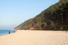 Parque nacional de Wolin - praia fotografia de stock