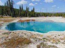 Parque nacional de Yellowstone Imágenes de archivo libres de regalías