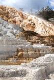 Parque nacional de Yellowstone imagens de stock