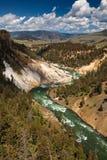 Parque nacional de Yellowstone Fotografía de archivo