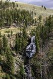 Parque nacional de Yellowstone de las cascadas Foto de archivo