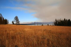 Parque nacional de Yellowstone do céu nebuloso de grama seca Fotografia de Stock