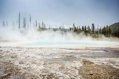 Parque nacional de Yellowstone, Utah, los E.E.U.U. Imagenes de archivo