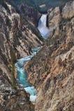 parque nacional de yellowstone, wyoming Fotos de Stock Royalty Free