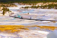 Parque nacional de Yellowstone, Wyoming, Estados Unidos Imagens de Stock