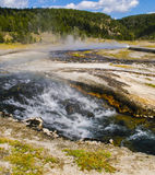 Parque nacional de Yellowstone, Wyoming, EUA Foto de Stock Royalty Free