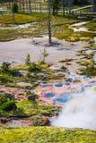 Parque nacional de Yellowstone, Wyoming, los E Imagen de archivo libre de regalías