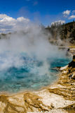 Parque nacional de Yellowstone, Wyoming, los E Imágenes de archivo libres de regalías