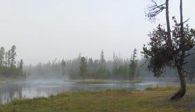 Parque nacional de Yellowstone, Wyoming, los E fotografía de archivo