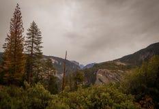 Parque nacional de Yosemite Imágenes de archivo libres de regalías