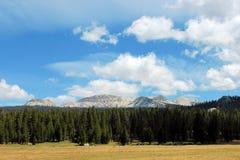Parque nacional de Yosemite, California, los E Imágenes de archivo libres de regalías