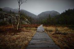 Parque nacional de Yosemite - camino Imágenes de archivo libres de regalías