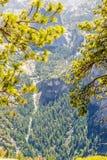 Parque nacional de Yosemite da meia abóbada Foto de Stock