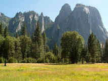 Parque nacional de Yosemite de los acantilados del granito del prado Imagen de archivo libre de regalías