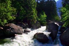 Parque nacional de Yosemite, los E.E.U.U. Foto de archivo