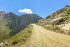 Parque nacional de zebra de montanha Imagens de Stock