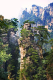 Parque nacional de Zhangjiajie em China Fotos de Stock Royalty Free