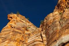 Parque nacional de Zion Fotos de archivo libres de regalías