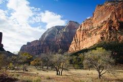 Parque nacional de Zion Imágenes de archivo libres de regalías
