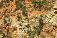 Parque nacional de Zion imagem de stock royalty free