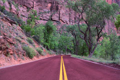 Parque nacional de Zion Imagem de Stock