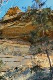 Parque nacional de Zion do platô superior de Kolob Imagem de Stock