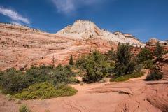 Parque nacional de Zion, Utah Imágenes de archivo libres de regalías