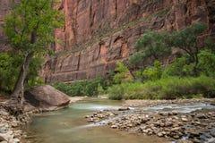 Parque nacional de Zion, Utah Imagen de archivo libre de regalías