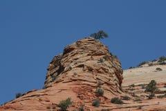 Parque nacional de Zion, Utah Foto de archivo libre de regalías