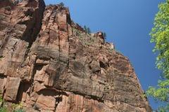 Parque nacional de Zion, Utah Fotografía de archivo libre de regalías