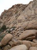 Parque nacional del árbol de Joshua Foto de archivo libre de regalías