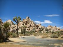 Parque nacional del árbol de Joshua Imágenes de archivo libres de regalías