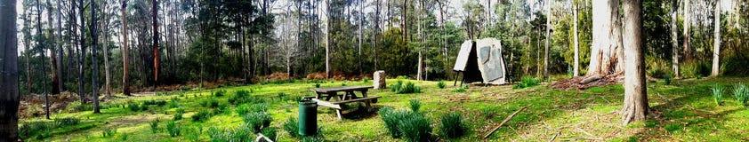 Parque nacional del arbusto Fotos de archivo libres de regalías