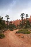 Parque nacional del barranco de Brice en Utah, los E Fotografía de archivo