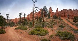Parque nacional del barranco de Brice en Utah, los E Imagen de archivo